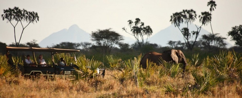 SAFARI IN AFRIKA
